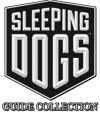 Guide-Collection-Image-250x300
