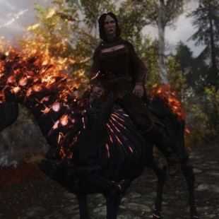 The 10 Best Skyrim Mods of 2013