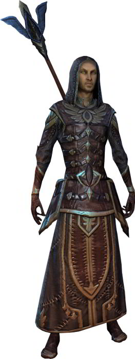 The Elder Scrolls Online High Elf Class Guide