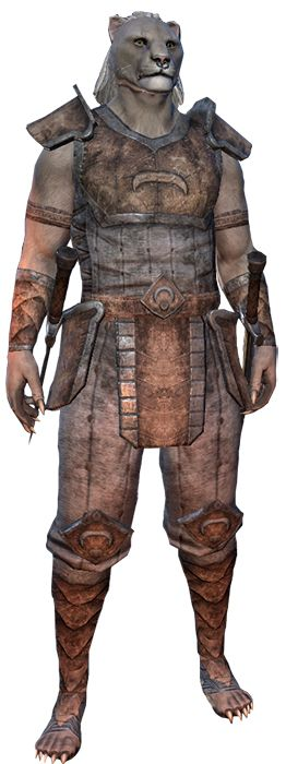 Khajit Elder Scrolls Online Character Creation Guide