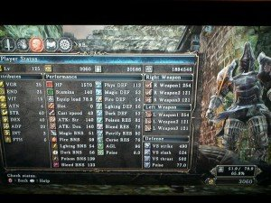 Dark Souls 2 Build
