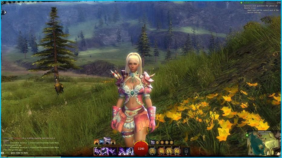 Guild-Wars-2-Gameplay-Screenshot-3.jpg