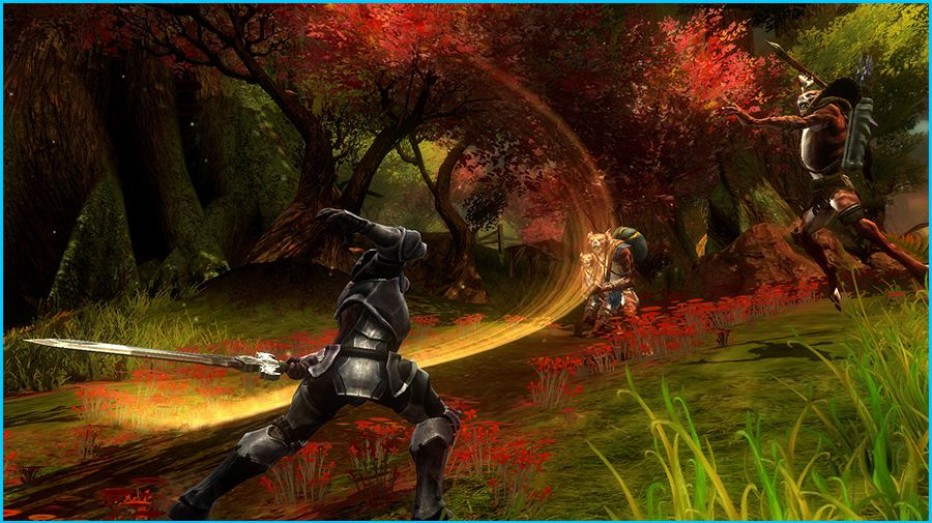 Kingdoms-of-Amalur-Gameplay-Screenshot-2.jpg
