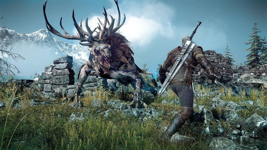Witcher 3 Release Delayed