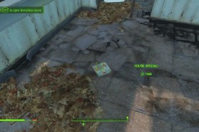 How To Get Max SPECIAL Points And Dupe Items In Fallout 4