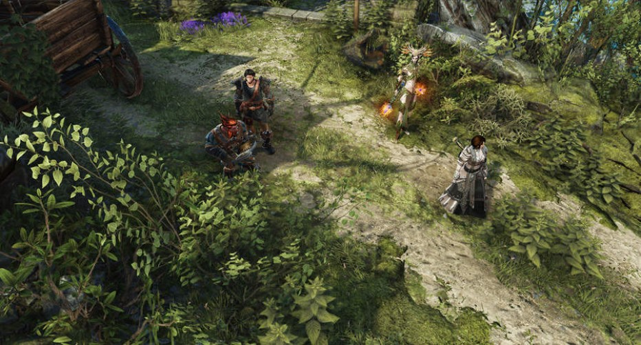 Divinity-Original-Sin-II-Screenshot-3.jpg