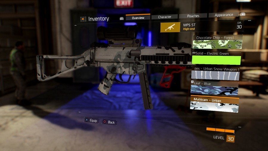 The Division Weapon Skin 4