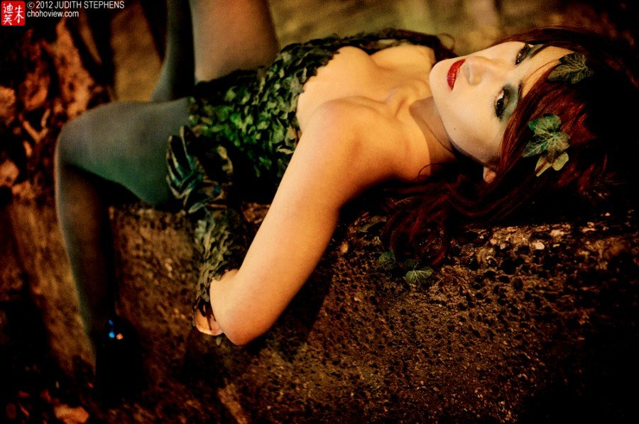 Batman Poison Ivy  Cosplay - Gamers Heroes