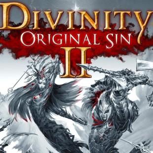 Divinity Original Sin 2 Side Quest Guide