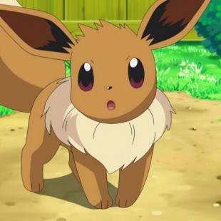 Where To Catch Eevee In Pokemon Sun And Moon