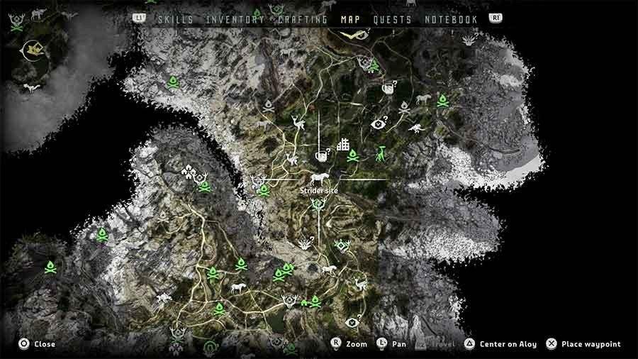 Where To Find Strider