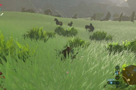 Where To Tame Horses In Zelda Breath Of The Wild
