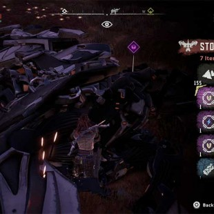 how to get permanent fast travel in horizon zero dawn