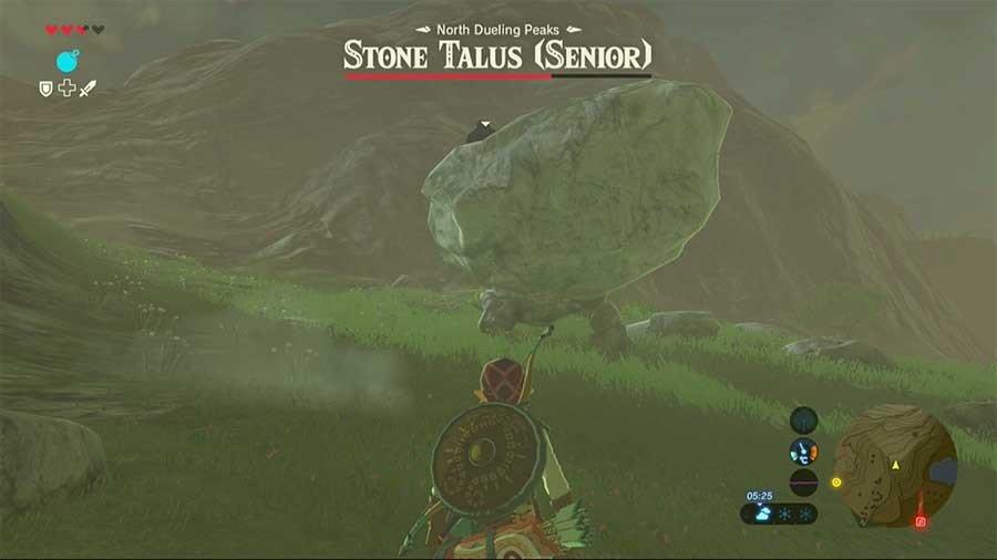 Stone Talus (Senior)
