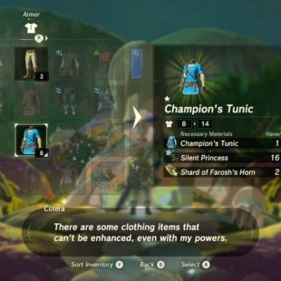 Where To Get Shard Of Faroshs Horn In Zelda Breath Of The Wild