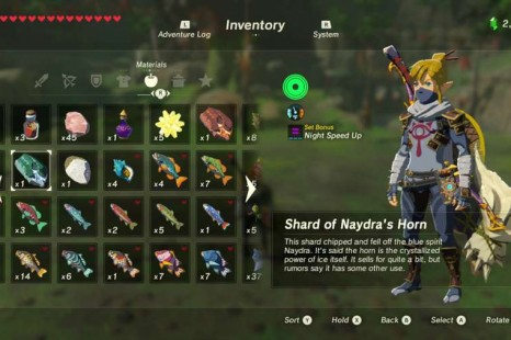 Zelda breath of the wild where to get fire resistance gear where to get shard of naydras horn in zelda breath of the wild forumfinder Gallery