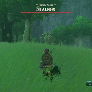 Zelda Breath Of The Wild Hidden Boss Locations Guide