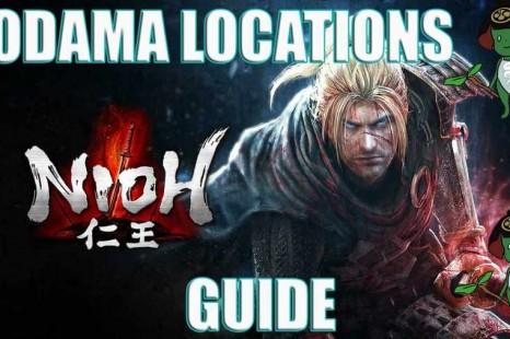 Nioh: Dragon Of The North Kodama Location Guide