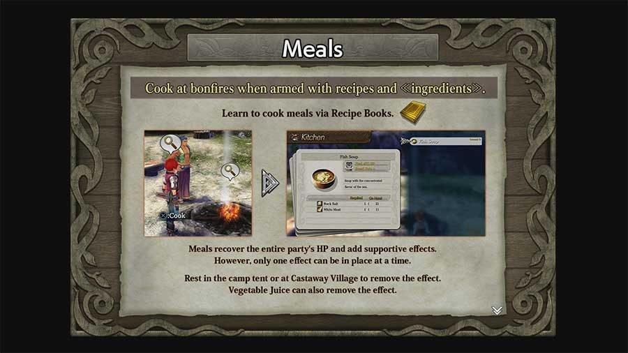 Ys 8 Lacrimosa Of Dana Meal & Recipe Book Guide