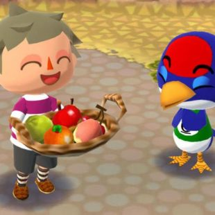Animal Crossing Pocket Camp Vacation Choice Guide