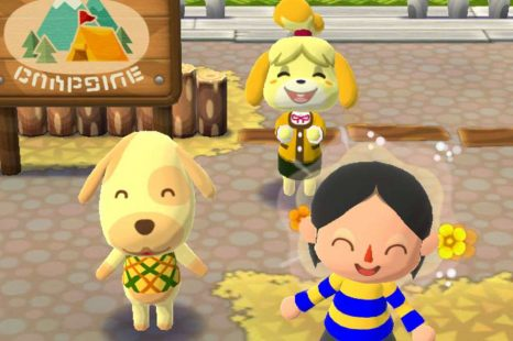 How To Find Your Friend Code In Animal Crossing Pocket Camp
