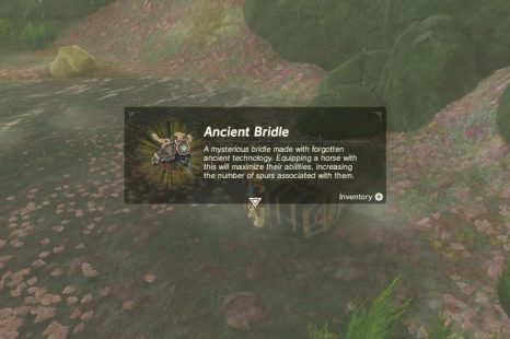 Where To Find The Ancient Bridle And Saddle In Zelda Breath Of The Wild