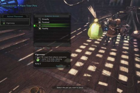 How To Catch Pets In Monster Hunter World