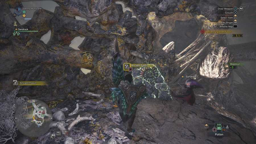 Where To Find Forgotten Fossils In Rotten Vale - Monster Hunter World