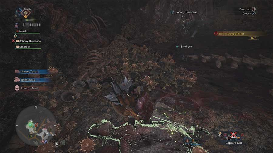 Where To Find Lump Of Meat In Rotten Vale - Monster Hunter World