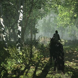 How To Get To The 12th Colossus In Shadow Of Colossus
