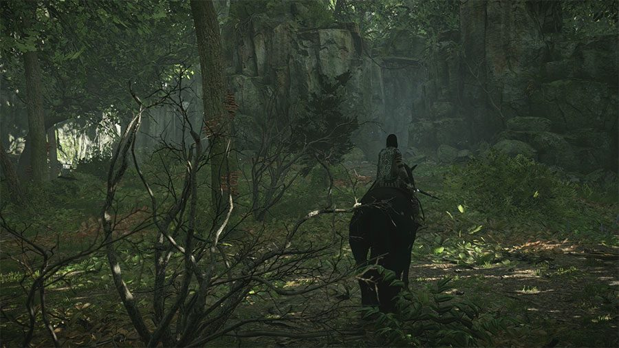 How To Get To The 12th Colossus In Shadow Of Colossus Walkway