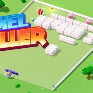 Voxel Baller Review