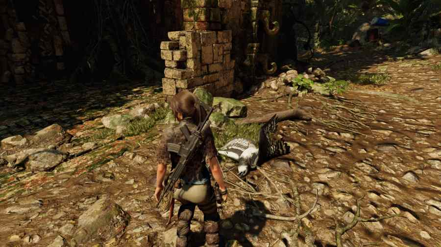Where To Find Eagle Feathers In Shadow Of The Tomb Raider