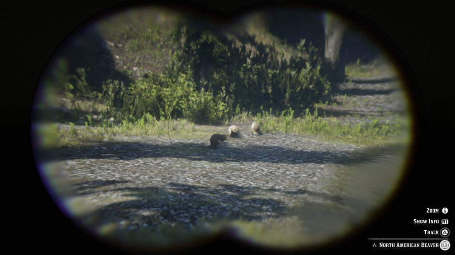 Beaver Red Dead Redemption 2