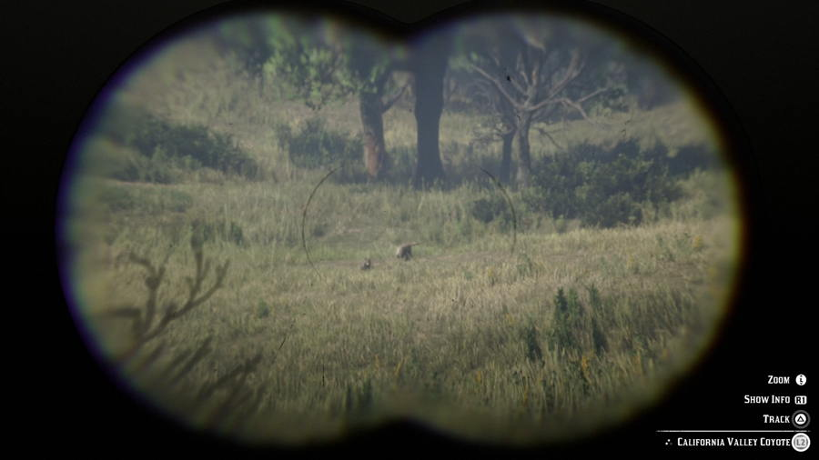 Coyote Location Red Dead 2