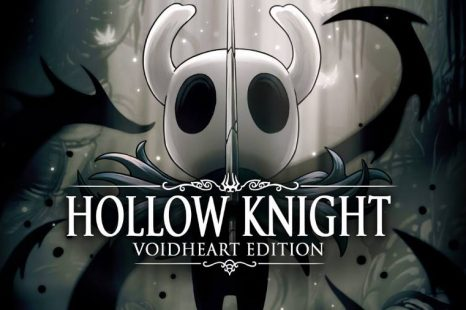 Hollow Knight: Voidheart Edition Review