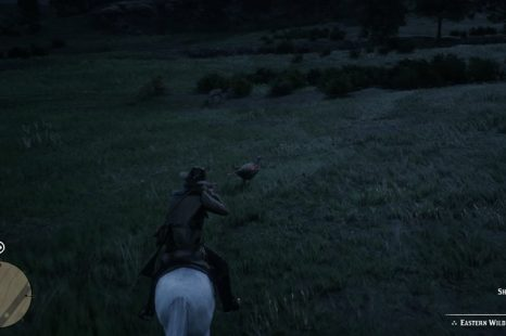 How To Get Perfect Hides In Red Dead Redemption 2