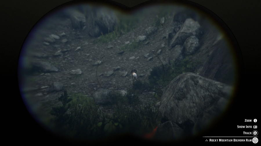 Mountain Goat Location Red Dead 2