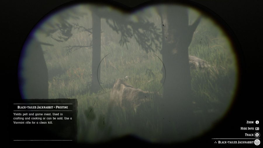 Red Dead Redemption 2 Rabbit