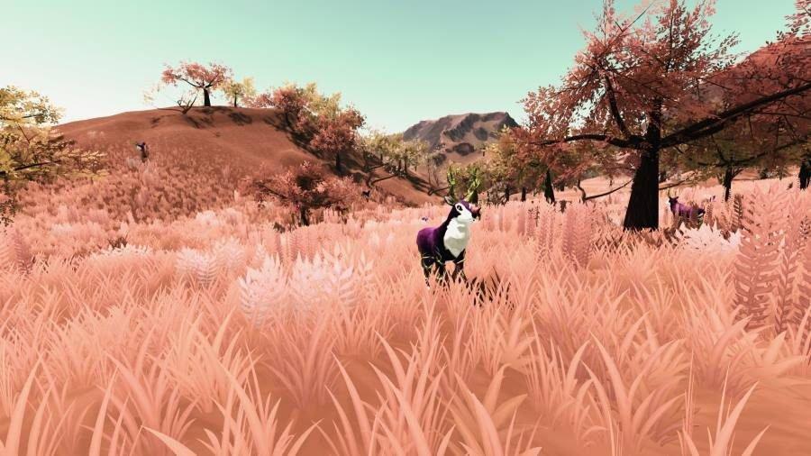 Creatures of Enderia - Gamers Heroes