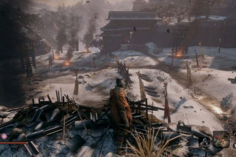 How To Cure Dragonrot in Sekiro Shadows Die Twice