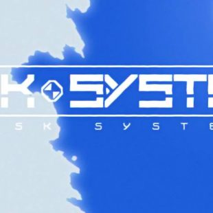 Risk System Review