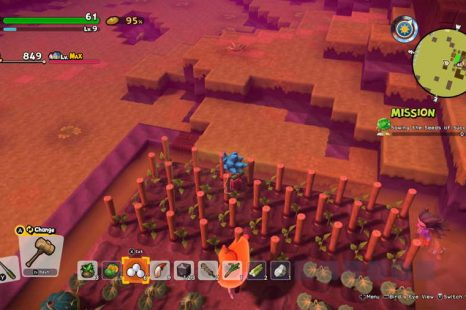 How To Grow Tomatoes In Dragon Quest Builders 2