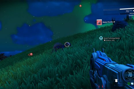 Where To Find Meaty Chunks In No Man's Sky Beyond