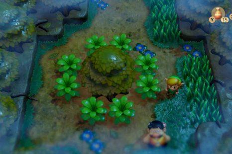 How To Get Past The Raccoon In Zelda Link's Awakening
