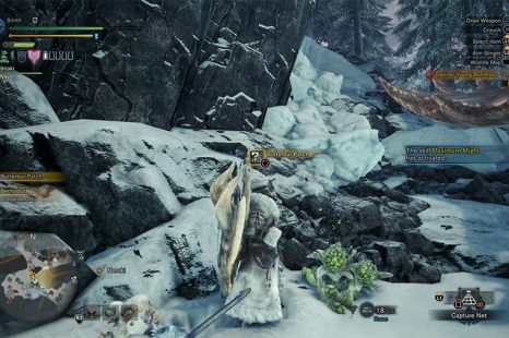Where To Find Young Butterbur In MHW Iceborne