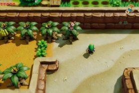 Where To Get Bananas For The Monkey In Zelda Link's Awakening