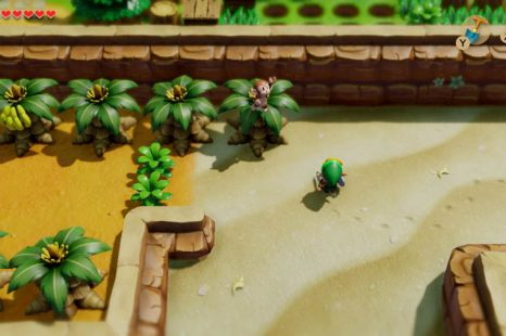 Where To Get Bananas For The Monkey In Zelda Link's Awakening