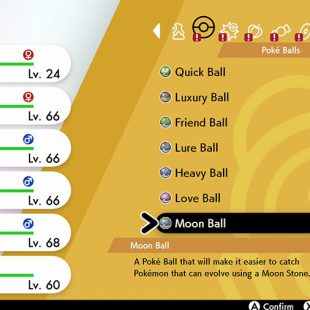 Where To Buy Special Poke Balls In Pokemon Sword & Shield