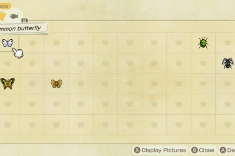 Animal Crossing New Horizons Bug Catching Guide
